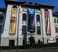Image of Muzeului Olteniei