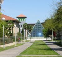 Image of Texas A&M International University