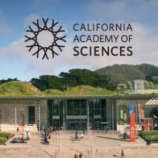 Image result for california academy of sciences