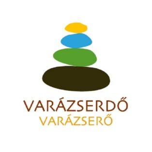 img logo fulldome organization magic-forest-amphitheater-alsoors-varazserdo-amfiteatrum-alsoors