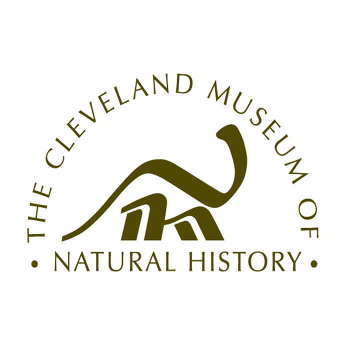 Job Opportunity Astronomy Education Coordinator The Cleveland